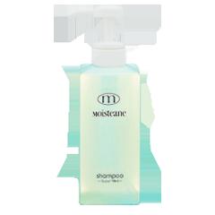 prdimgL_shampoo